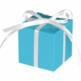 Bermuda Blue Treat Boxes