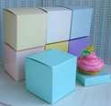 Cupcake Boxes with Inserts