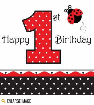 Fancy Lady Bug 1st Birthday Party Supplies & Decorations