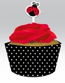 Ladybug Fancy Cupcake Decorating Kit