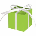 Lime Green Treat Boxes