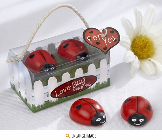 Adorable pair of Lady Bug magnets in a cute gift box