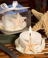 Starfish Candles