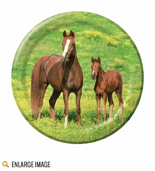 Wild Horses party supplies feature majestic horses in a wide-open field of grass.