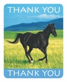 Wild Horses Foldover Thank You