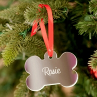 Dog Bone Personalized Acrylic Ornament