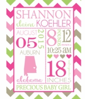 Pink Baby Girl Personalized Birth Announcement Plush Blanket
