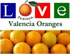 <b>California Valencia Oranges</b>