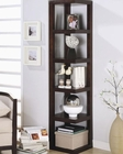 Contemporary Corner Bookcase CO800268