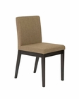 Euro Style Side Chair Banquo EU-09855 (Set of 2)