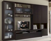 Italian Wall Unit in Wenge Finish 33E61