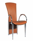Modern Arm Chair in Brown Finish European Design 33D243 (Set of 2)