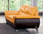 Two Tone Leather Loveseat European Design 33SS223