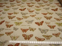 2 1/2 yards butterfly tapestry upholstery fabric