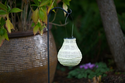 Soji Stella Bulb - Pearl with White LED