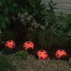 Solar Ladybug Accents 4 Piece Set, a solar accent light for shrubs and flowerbeds