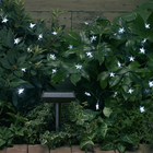 White Star Solar String Light 30 Energy Saving White LEDs