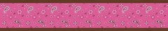 Cowgirl Bandana Wallpaper Border By Sweet Jojo Designs