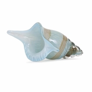 Bermuda Glass Shell