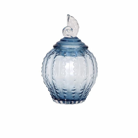 Conch Medium Glass Canister