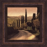 Country Lane, Tuscany by Elizabeth Harris  Framed Canvas Print