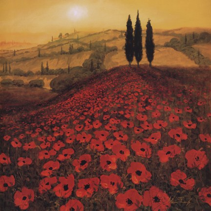 Poppy Field by Steve Thoms Art Print
