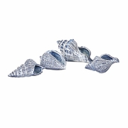 Shirver Shells - Set of 4