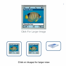 Multiple Product Images for Aabaco/Yahoo Store
