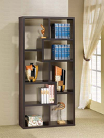 Bookcase and Shelves
