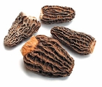 Dried Morels - Cone Shaped,  No Tail, France