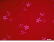 Starfish Mens Sarong in Red