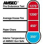 Amsec Extra Large Fire Rated Electronic Wall Safe With Lighted Keypad
