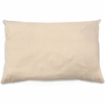 Naturepedic Organic Cotton Pillows in Toddler Size