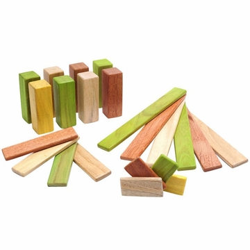 Tegu Endeavor Set: Jungle Magnetic Blocks (22 pcs)
