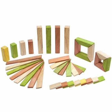 Tegu Explorer Set: Jungle Magnetic Blocks (40 pcs)