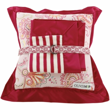 Oliver B Lovie Pillow & Blanket Set