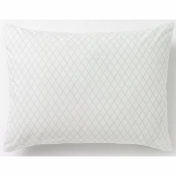 DwellStudio Marquis Robin's Egg Standard Pillow Case