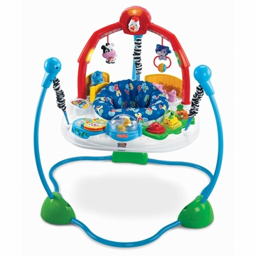 Fisher-Price Laugh 'n Learn Jumperoo