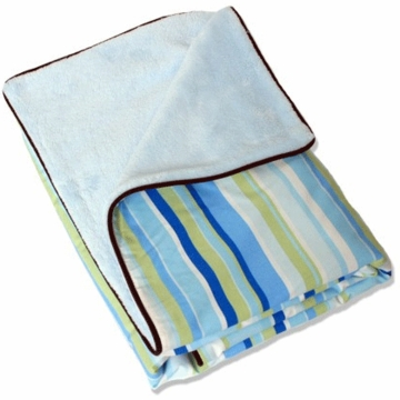 Caden Lane Piped Blanket in Blue Stripe