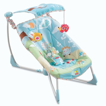 Fisher-Price Soothe & Go Bouncy Seat