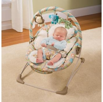 Summer Infant Snuzzler Bouncer