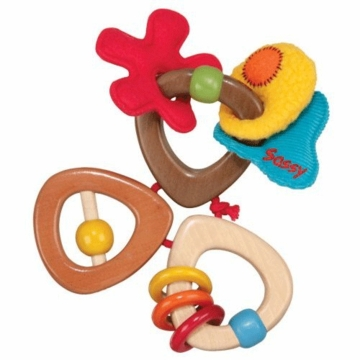 Sassy Earth Brights Wooden Trio Toy