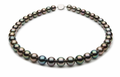 10 x 11mm Black Tahitian Pearl Necklace