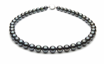 8.5 x 9.9mm Black Tahitian Pearl Necklace Blue Color