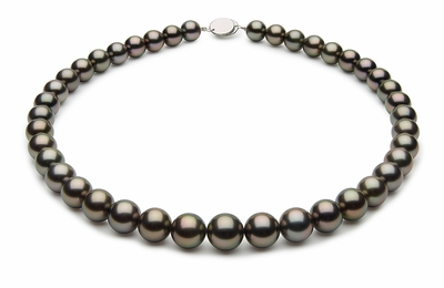 10 x 11.4mm Black Tahitian Pearl Necklace Dark Black Peacock Color