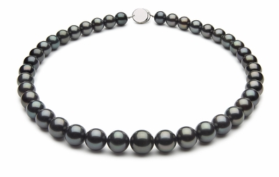 10 x 12mm Black Tahitian Pearl Necklace Blue Color