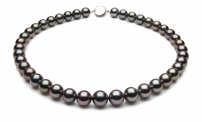 10 x 11.4mm Black Tahitian Pearl Necklace Aubergine Color