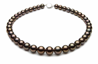10 x 11.9mm Black Tahitian Pearl Necklace Bronze Color