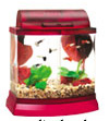 Mini Bow 2.5 Gallon Bow Front Acrylic Aquarium Kit Red