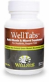 Wellness WellTabs 100ct Bottle for Cats